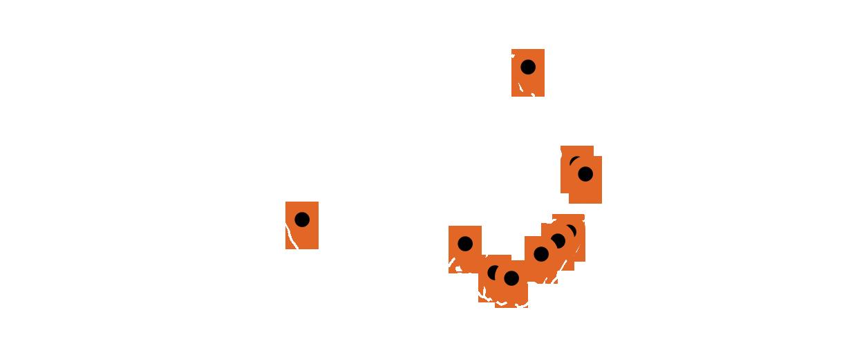 Phone Repair Map